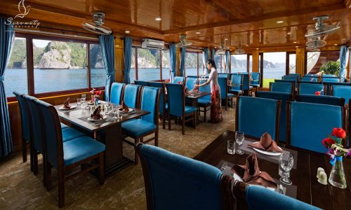 Serenity Cruises one day tour