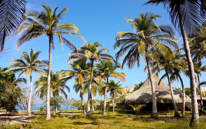 Isla-Grande-in-Bolivar