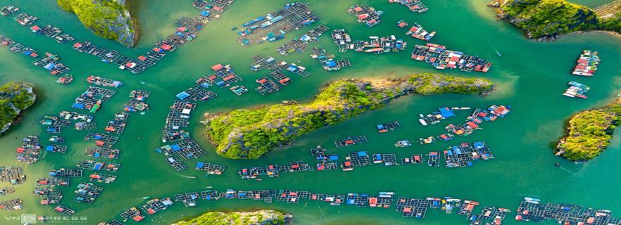 cat-ba-island-among-top-1-of-the-worlds-best-kayaking-destinations